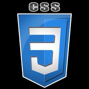 css3_logo