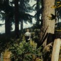 The-Forest-PS4